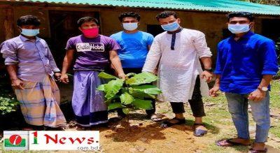 রশিদনগর ইউনিয়ন ছাত্রলীগের বৃক্ষরোপণ কর্মসূচি